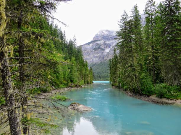 A remote turquoise river feeding into Kinney Lake, deep in the wilderness of the Rockies stock photo