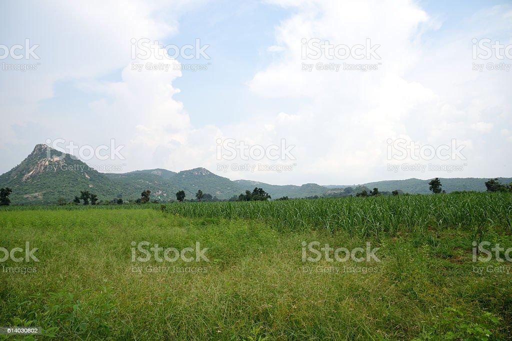 Remote Village Seen Of Purulia West Bengalindia Stock Photo