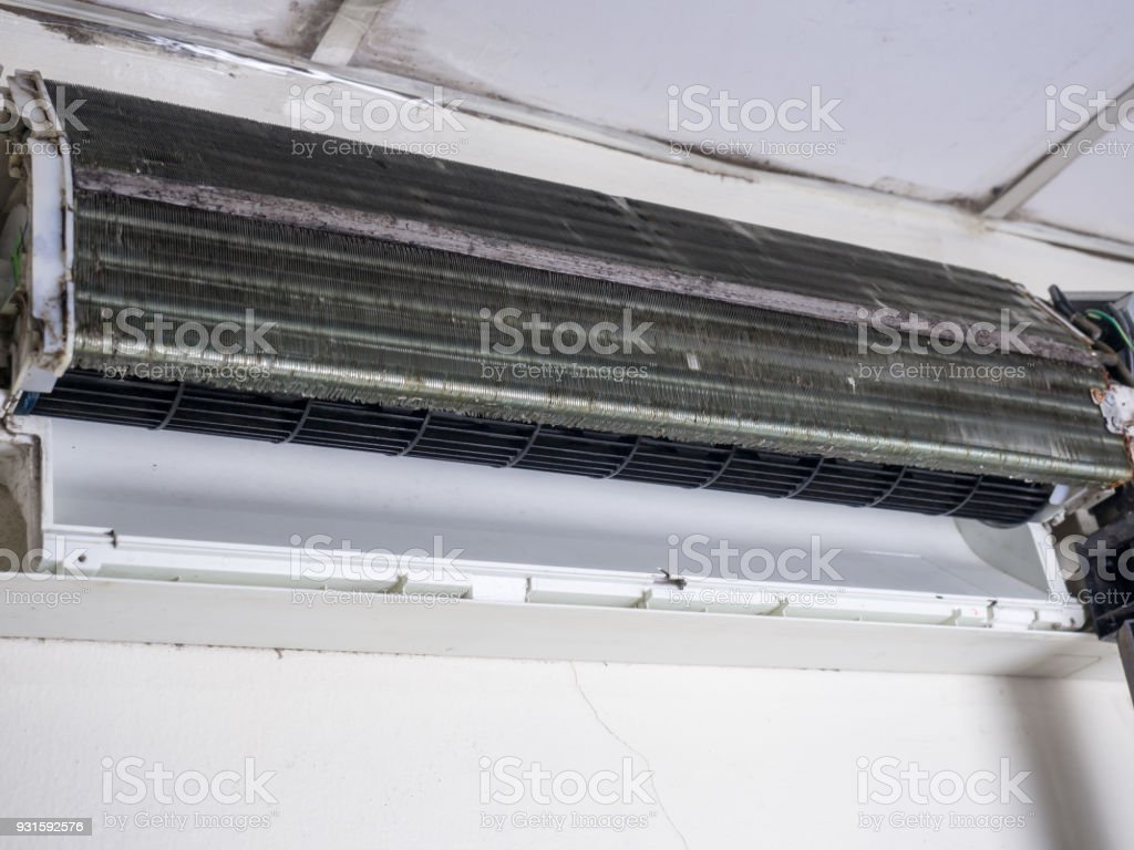 Entfernte Abdeckung Der Klimaanlage Und Gereinigte Eichhornchen