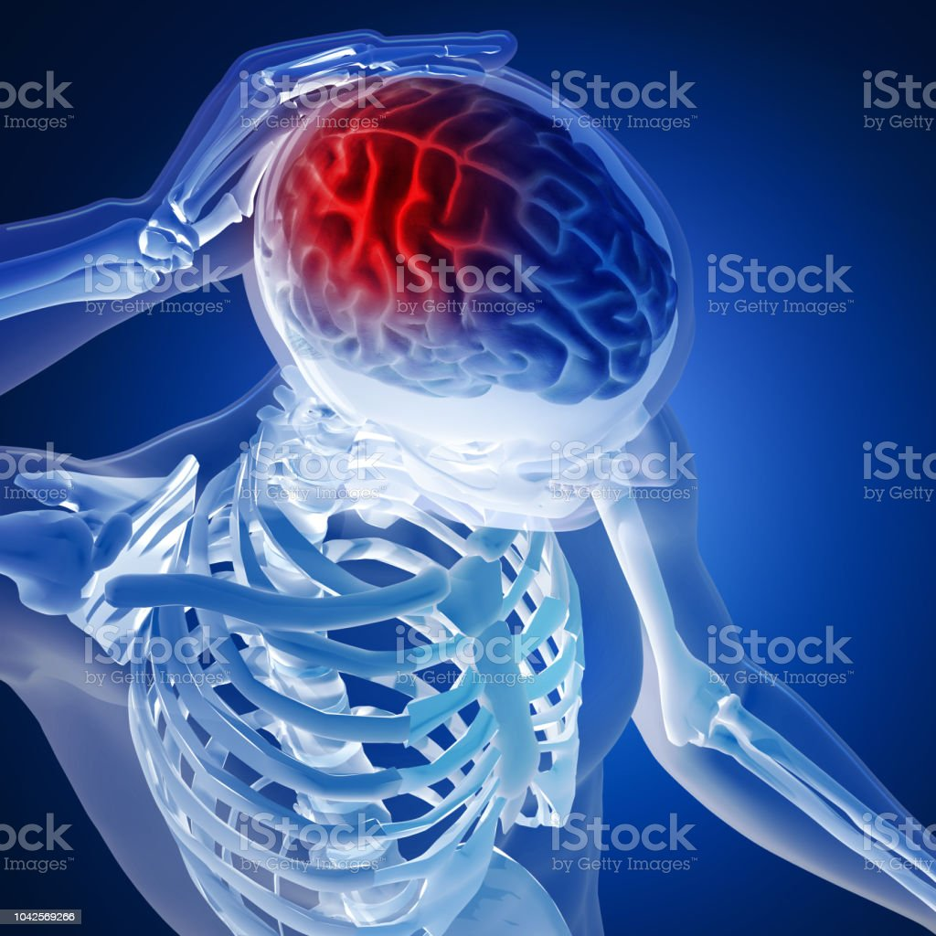 3D render of a medical figure with brain highlighted on blue background stock photo
