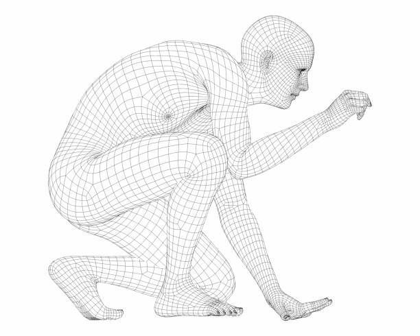 3d render of a wireframe male cyborg. - wire frame model stock photos and pictures