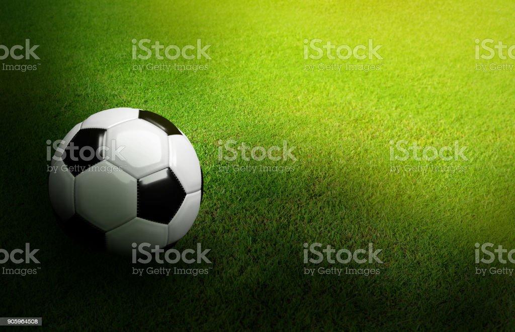 3d Gerendert Schwarzweiss Fussball Auf Grune Fussball Fussball