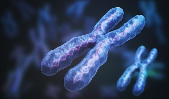 3d Rendered Illustration Of Chromosomes Genetics Concept Stock Photo - Download Image Now