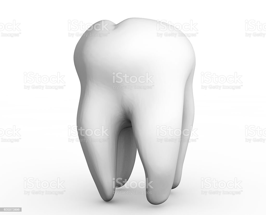 rendered tooth isolated on white background zbiór zdjęć royalty-free