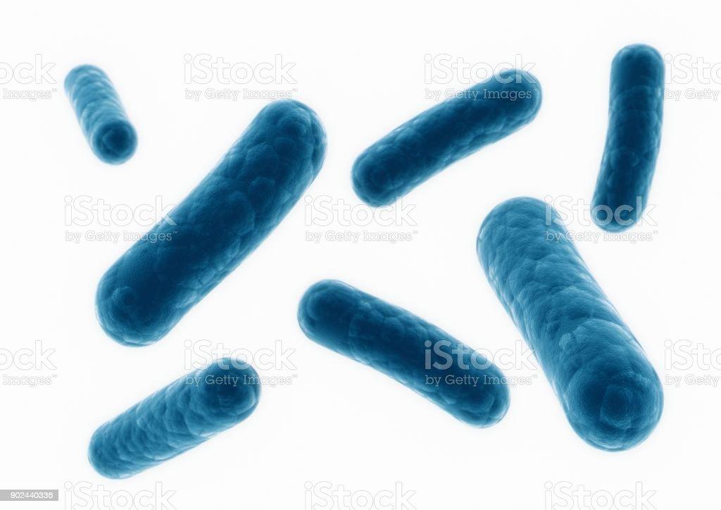 Render 3D y bacterias closeup - foto de stock