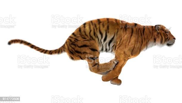 Rendering big cat tiger on whit picture id914770506?b=1&k=6&m=914770506&s=612x612&h=cnsaubd6ggq4hxuj4qrqoyt47krn4rs7bmoouyzrq5m=