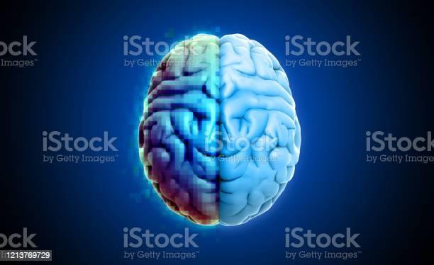 Rendering brain top view with pixelate half side picture id1213769729?b=1&k=6&m=1213769729&s=612x612&h=bjdurt5vqevw5gyqj7qt1 jeq6cjnew2zwf0rnuwqjg=