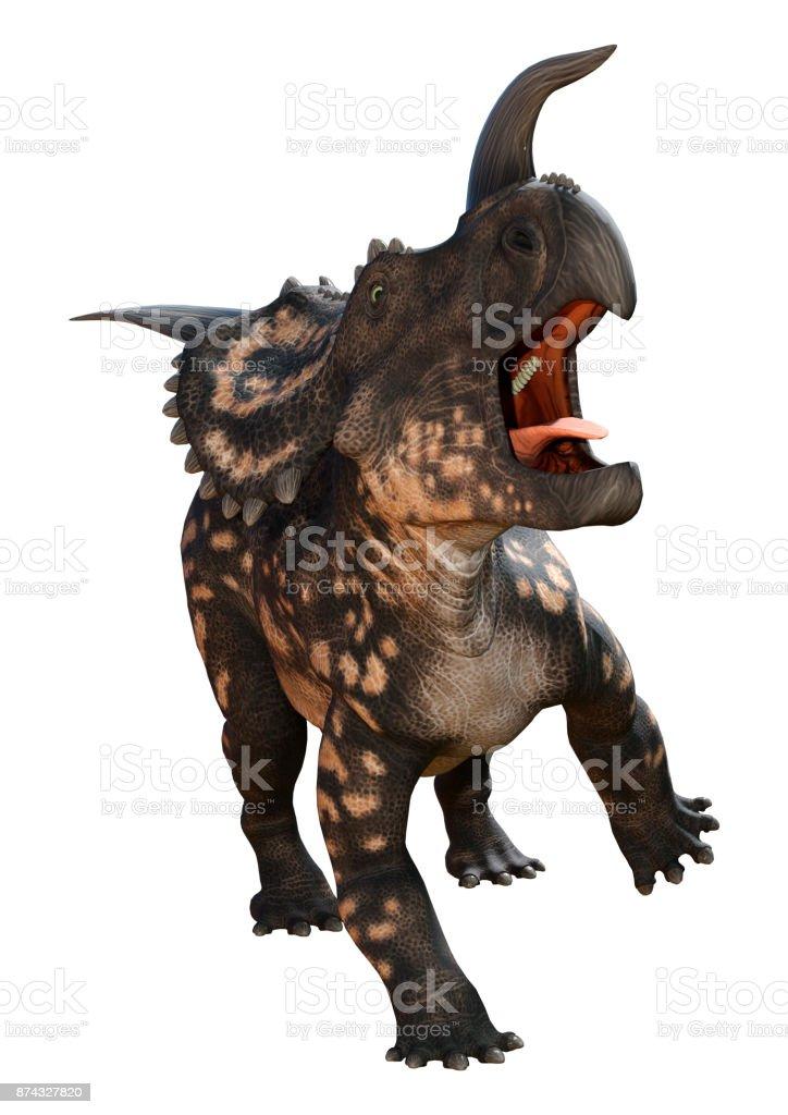 3D rendering dinosaur Einiosaurus on white stock photo