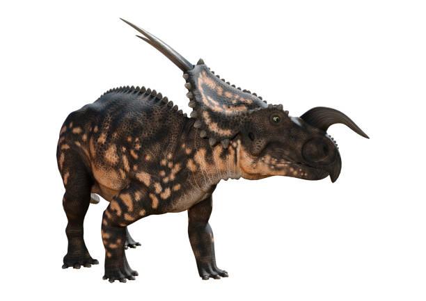 Rendering dinosaur einiosaurus on white picture id874327844?b=1&k=6&m=874327844&s=612x612&w=0&h=mxzmqezbo7ewlecwilf38czz2z mabklzfwyq0joh7u=