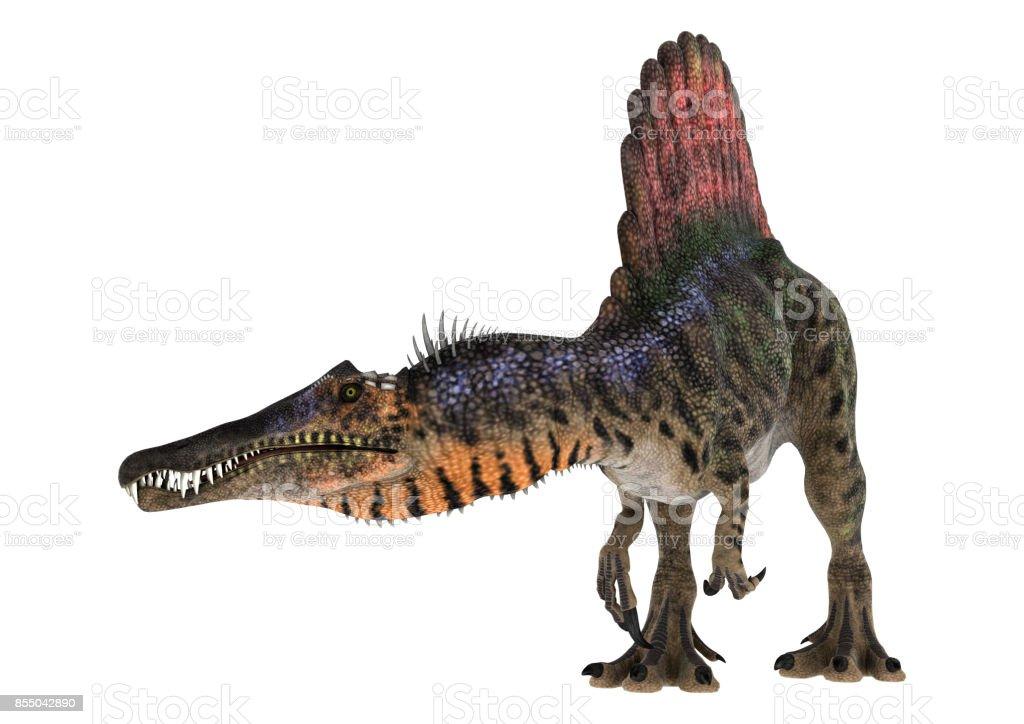 3D rendering dinosaur Spinosaurus on white stock photo