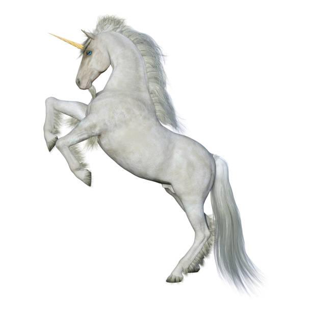 3D rendering fairy tale white unicorn on white stock photo