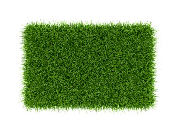 3D Rendering green grass field isolated on white background 3D Rendering green grass field isolated on white background. turf stock pictures, royalty-free photos & images