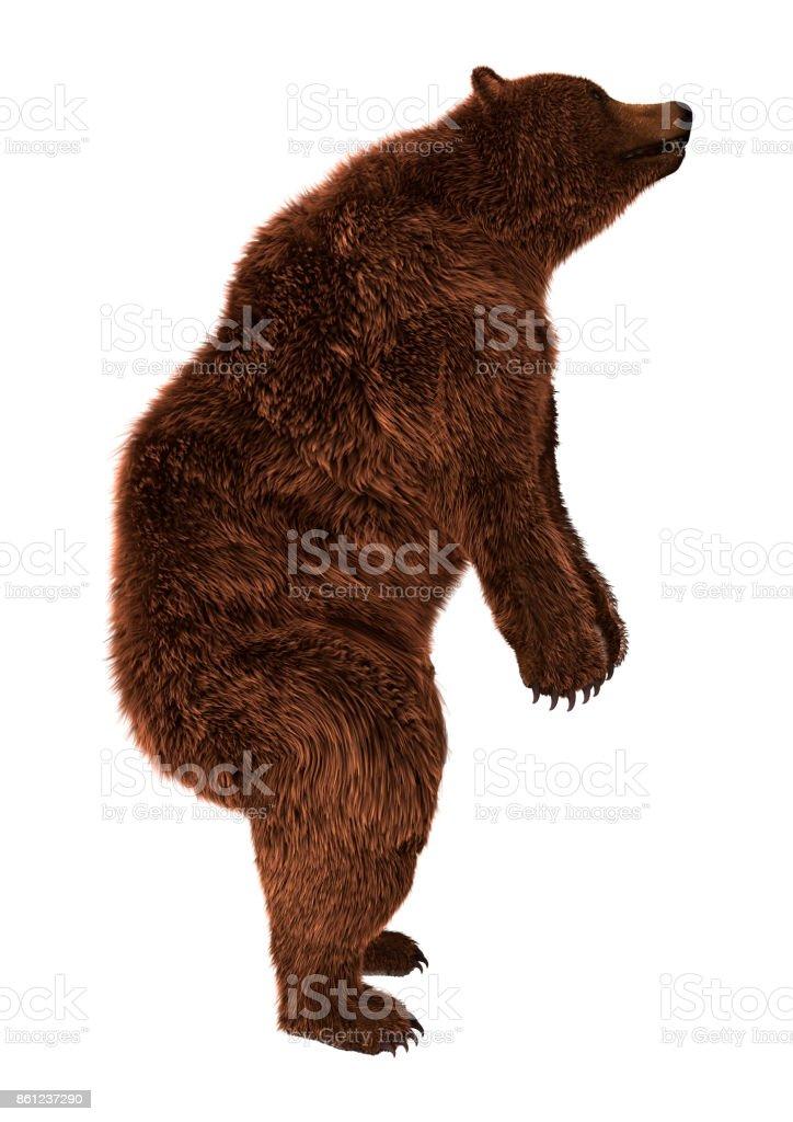 Renderização 3D urso branco - foto de acervo