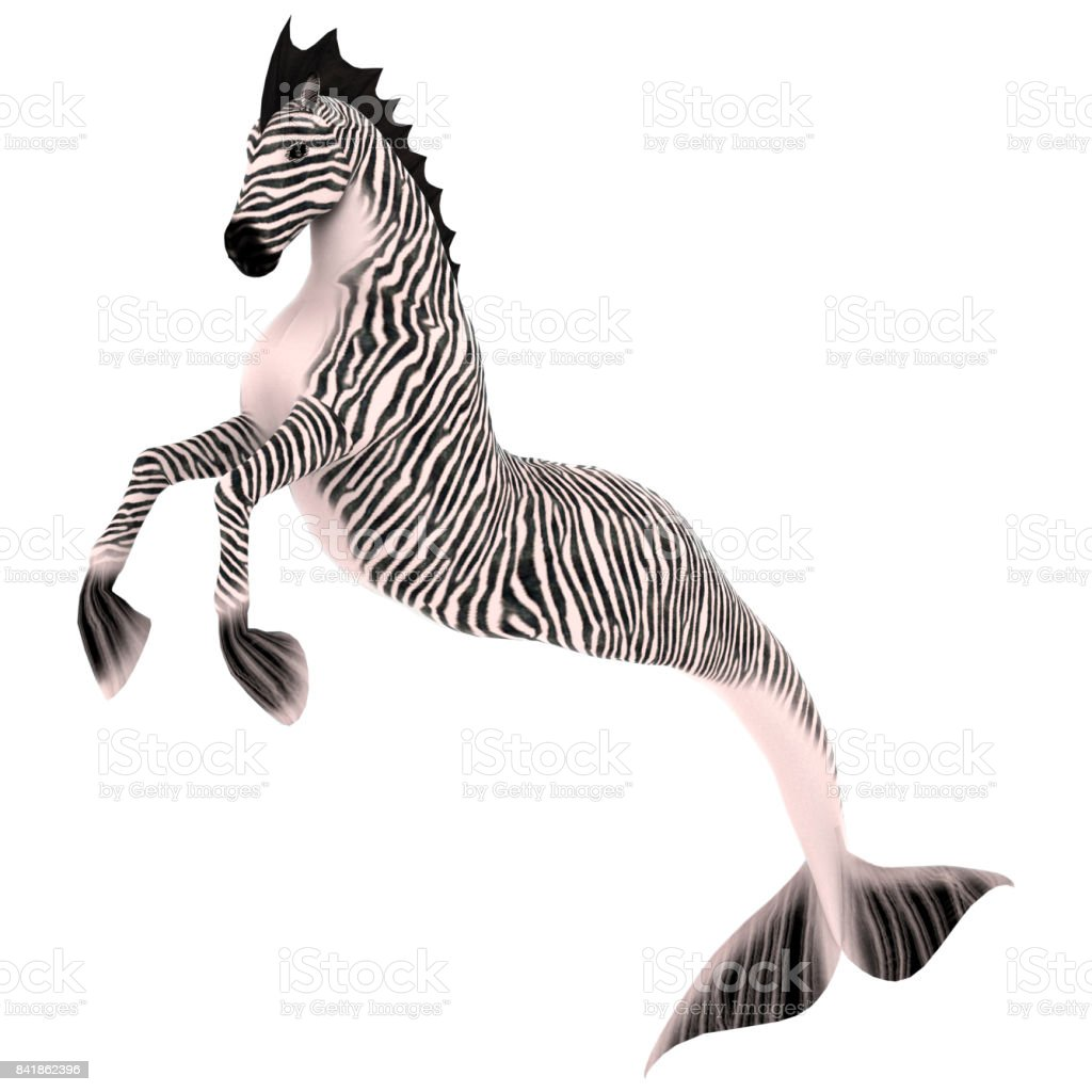 3D Rendering Hippocampus or Mermaid's Horse on White stock photo