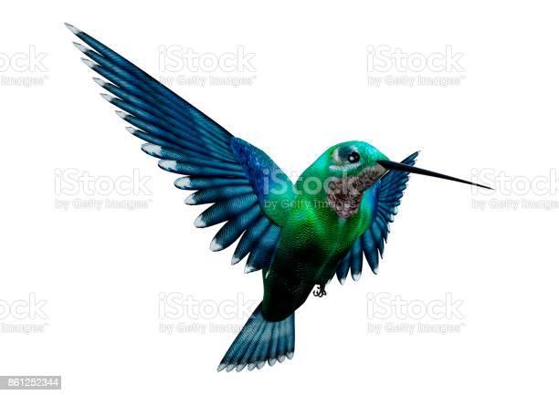 Rendering humming bird on white picture id861252344?b=1&k=6&m=861252344&s=612x612&h=blkmzfgqiknmh8f7ufpfdzcvk4zgep2jqwo99qdn6i4=