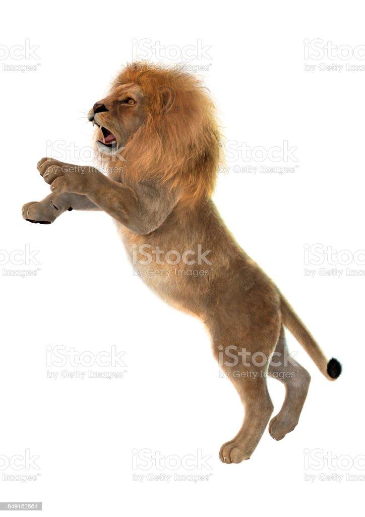 Beyaz üzerine 3D render erkek aslan stok fotoğrafı