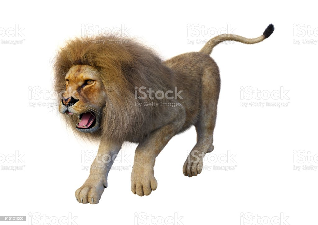 Beyaz erkek aslan oluşturma 3D stok fotoğrafı