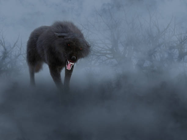 3D rendering of a black wolf with glowing red eyes. stock photo