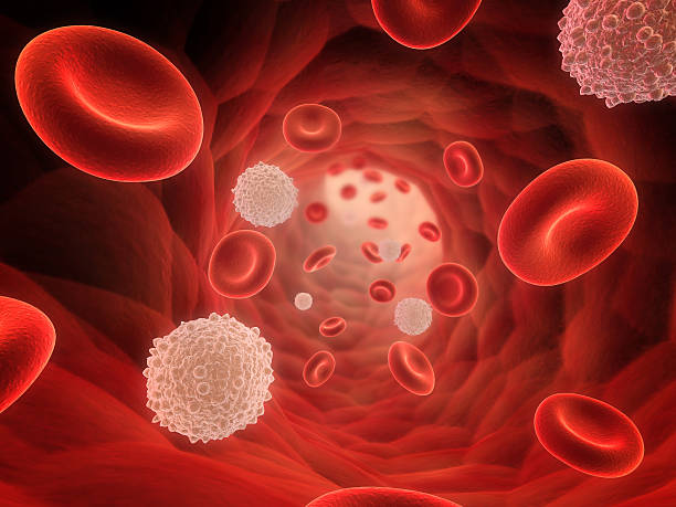 A 3D rendering of a bunch of red and white blood cells stock photo