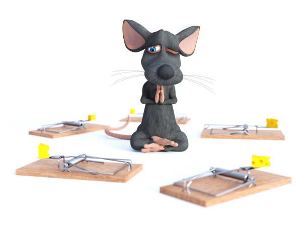 3d-rendering einer cartoon-maus yoga zu tun. - maus comic stock-fotos und bilder