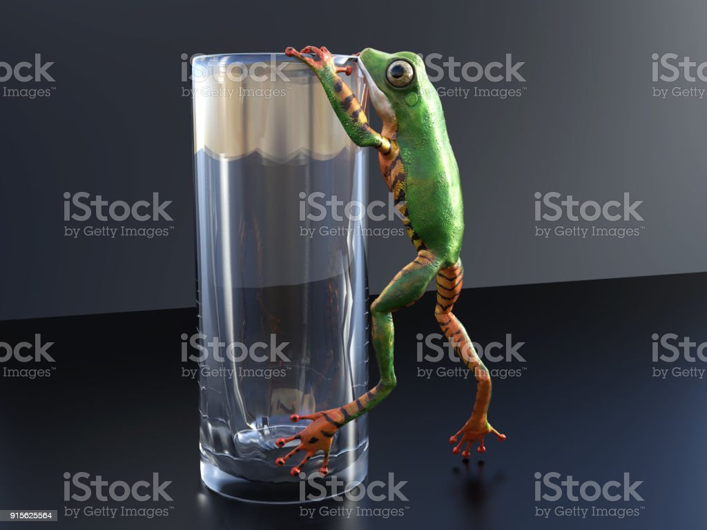 3D rendering of a realistic tree frog climbing on a glass. stock photo