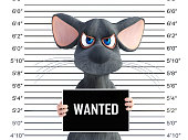 3D rendering of an angry cartoon mouse in a mugshot.