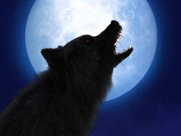 3D rendering of black wolf with red eyes in moonlight. stock photo