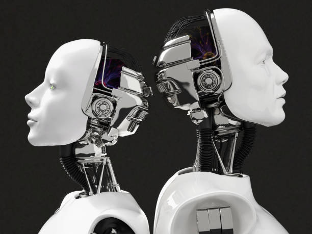 3D rendering of the heads of a female and male robot. stock photo