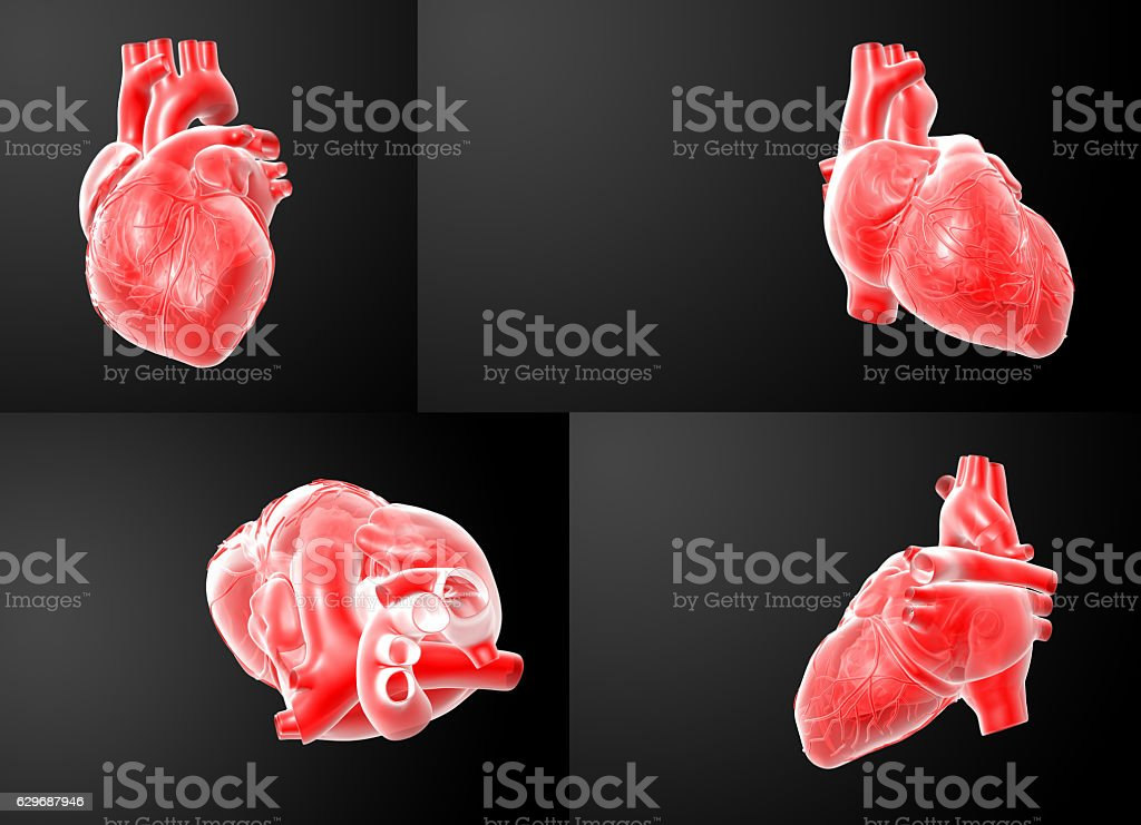 3D rendering of the  red Heart stock photo