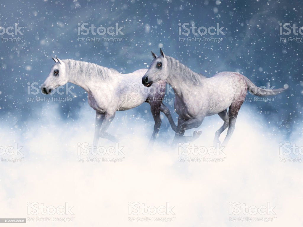 3d Rendering Of Two White Horses Running In Snow Stock Photo Download Image Now Istock