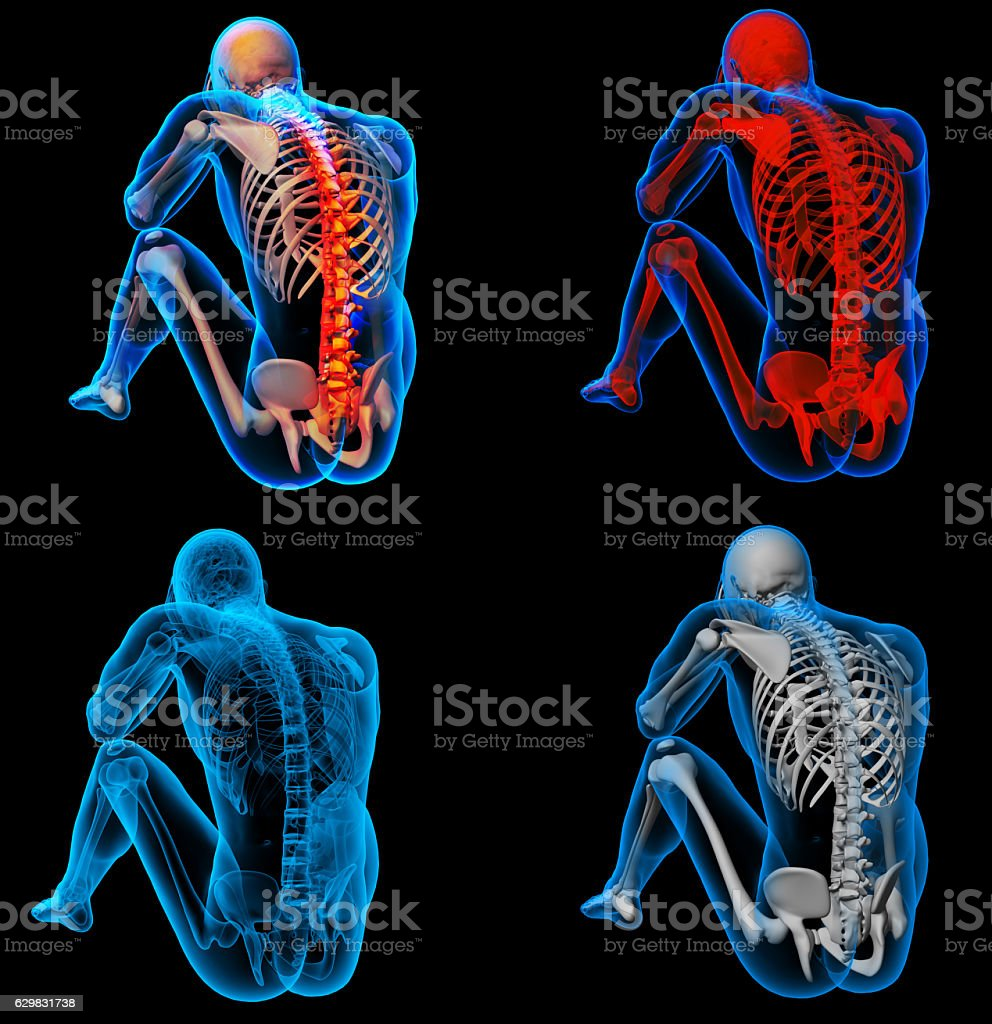 3d Rendering Skeleton Of The Man With The Backbone - Stock Foto e ...