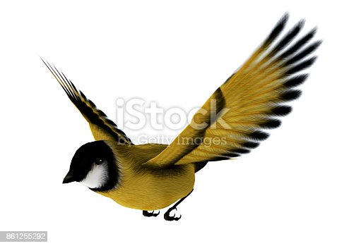 3D digital render of a flying songbird goldfinch isolated on white background