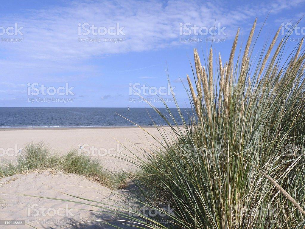 Renesse Beach - The Netherlands stock photo