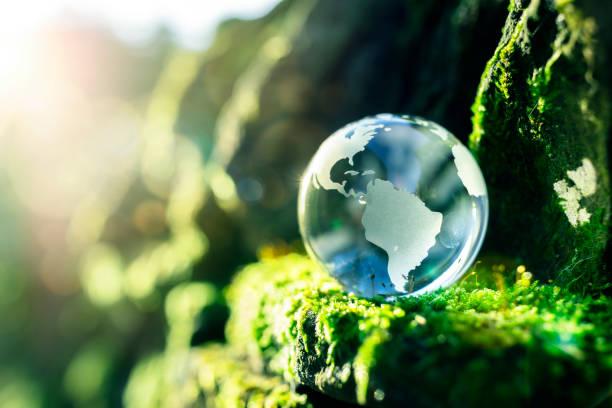 renewable energy and sustainable development - green world imagens e fotografias de stock