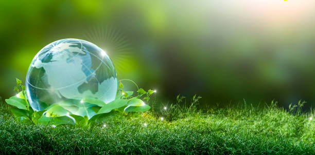 renewable energy concept earth day or environment protection hands protect forests that grow on the ground and help save the world. - green world imagens e fotografias de stock