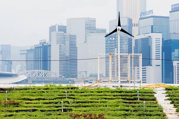 erneuerbare energien green urban landwirtschaft in hong kong, china - urbaner garten stock-fotos und bilder