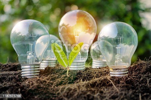 istock Renewable Energy. 1182573766