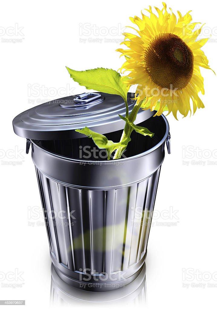 renewable stock photo