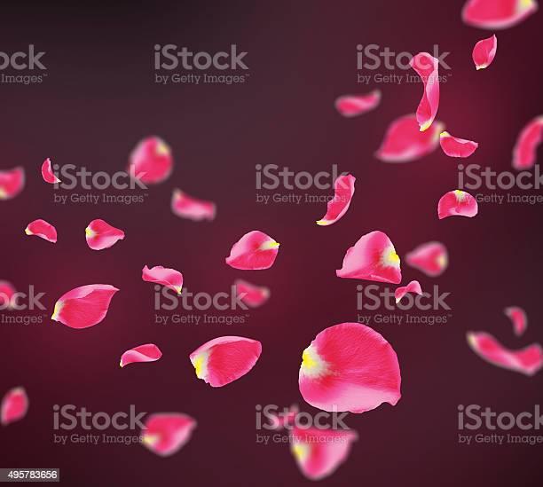 Repeatable falling rose petals picture id495783656?b=1&k=6&m=495783656&s=612x612&h=ha7sbxptyyvoetnfgpnfxxl8ahhjsrwaw0z0w9gbx y=