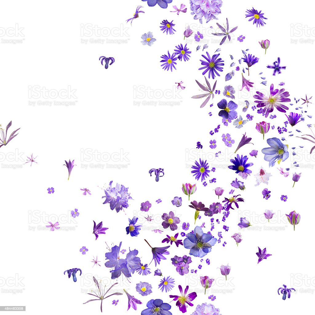 Repeatable Violet Flower Buds stock photo