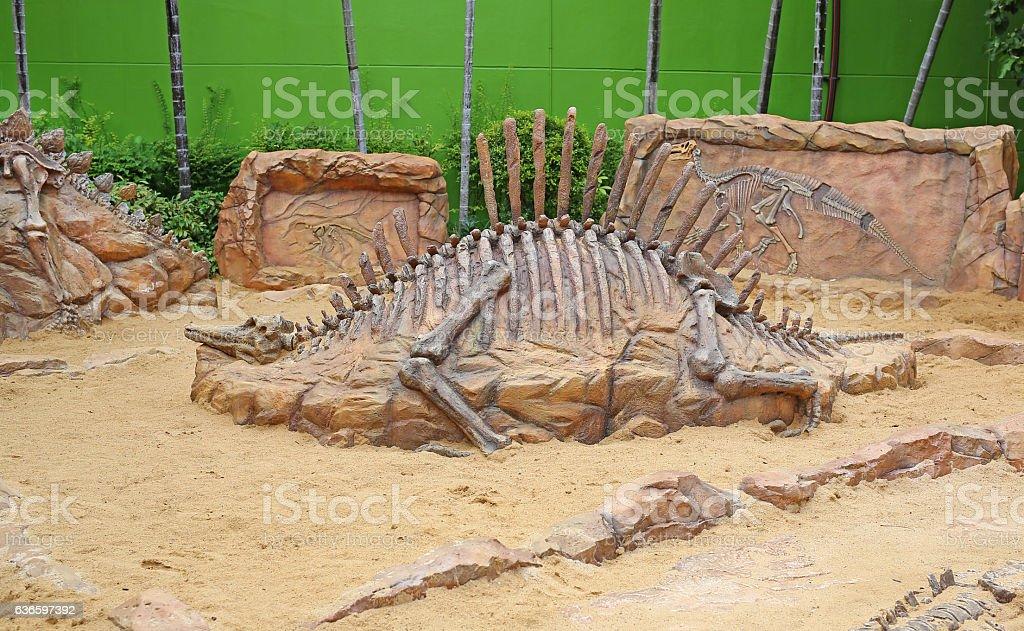replica dinosaur fossil on the sand ground stock photo