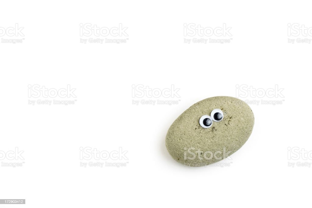 Replica of the old pet rocks stock photo