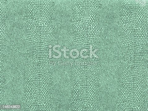 istock Reptile Skin ((high res, all in focus) 145243822