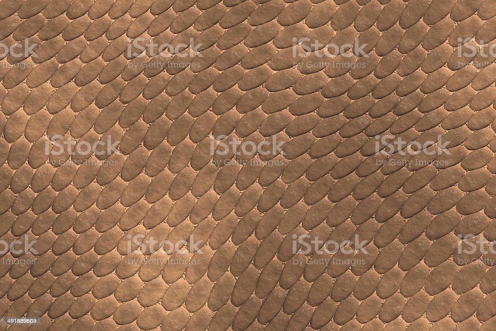 reptile skin stock photo