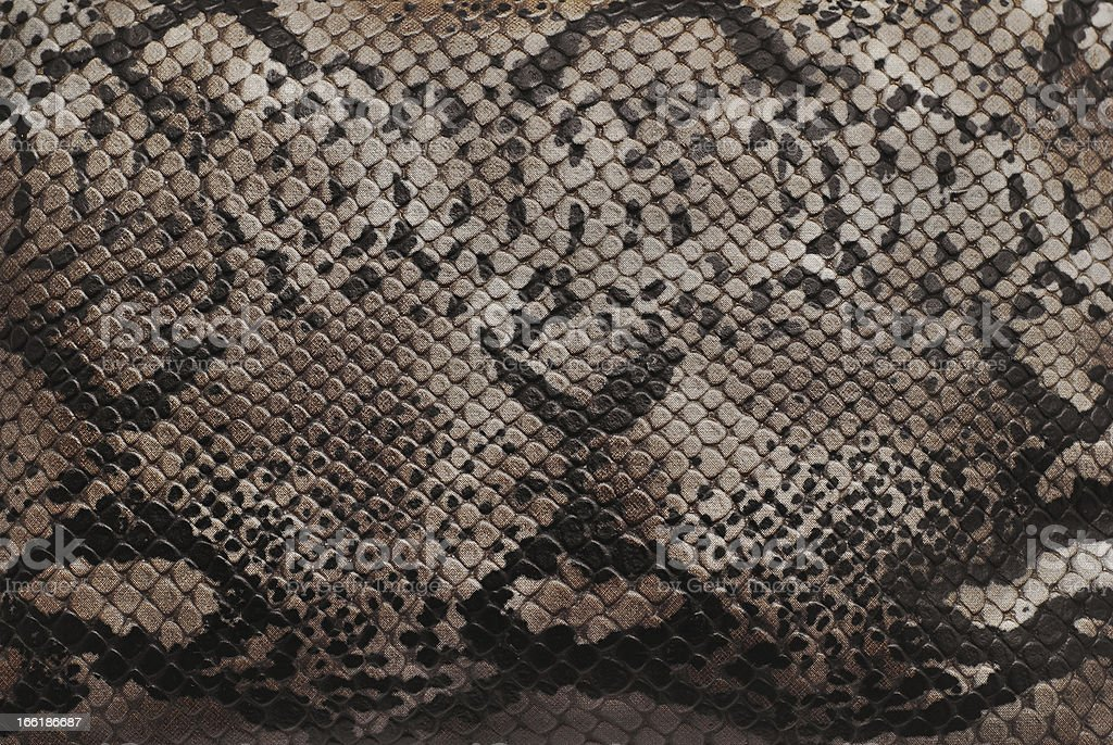reptile skin texture royalty-free stock photo