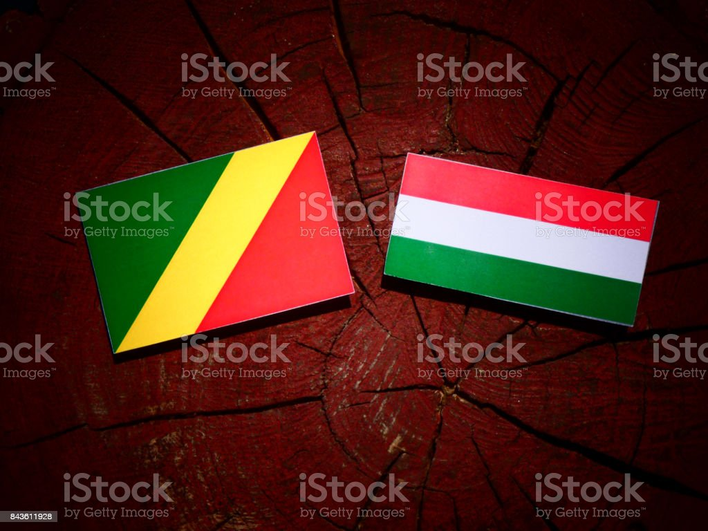 Republic of the Congo flag with Hungarian flag on a tree stump isolated stock photo
