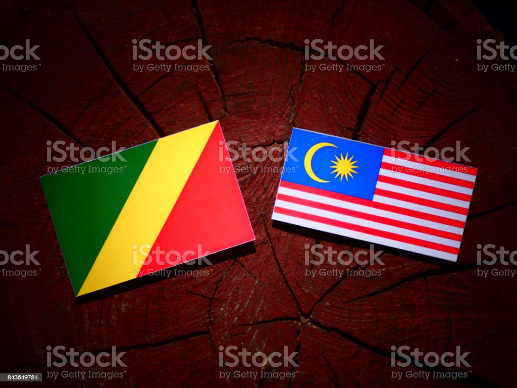 Republic of the Congo flag with Malaysian flag on a tree stump isolated stock photo