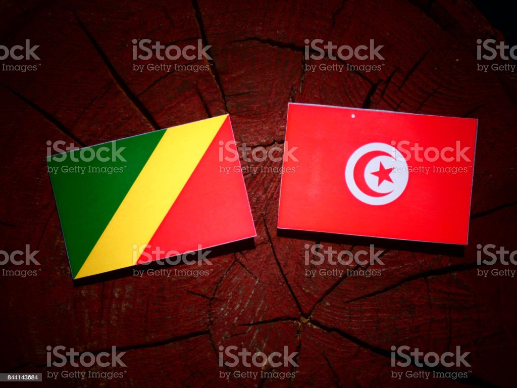Republic of the Congo flag with Tunisian flag on a tree stump isolated stock photo