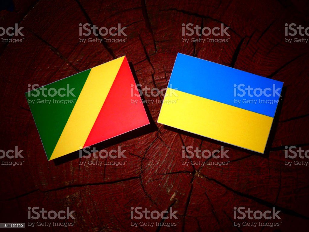 Republic of the Congo flag with Ukrainian flag on a tree stump isolated stock photo