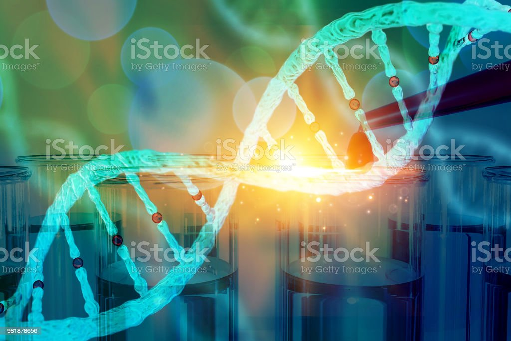 DNA research concept DNA barcodes for biomedical research  mitochondrial DNA  Prostate cancer DNA test stock photo